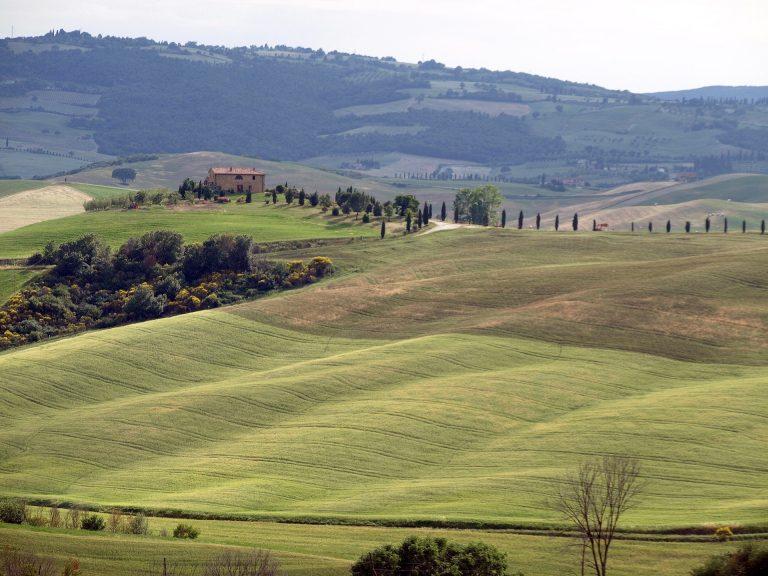 Dienstag, der 19.4.: Von Viareggio über Lucca nach Vinci